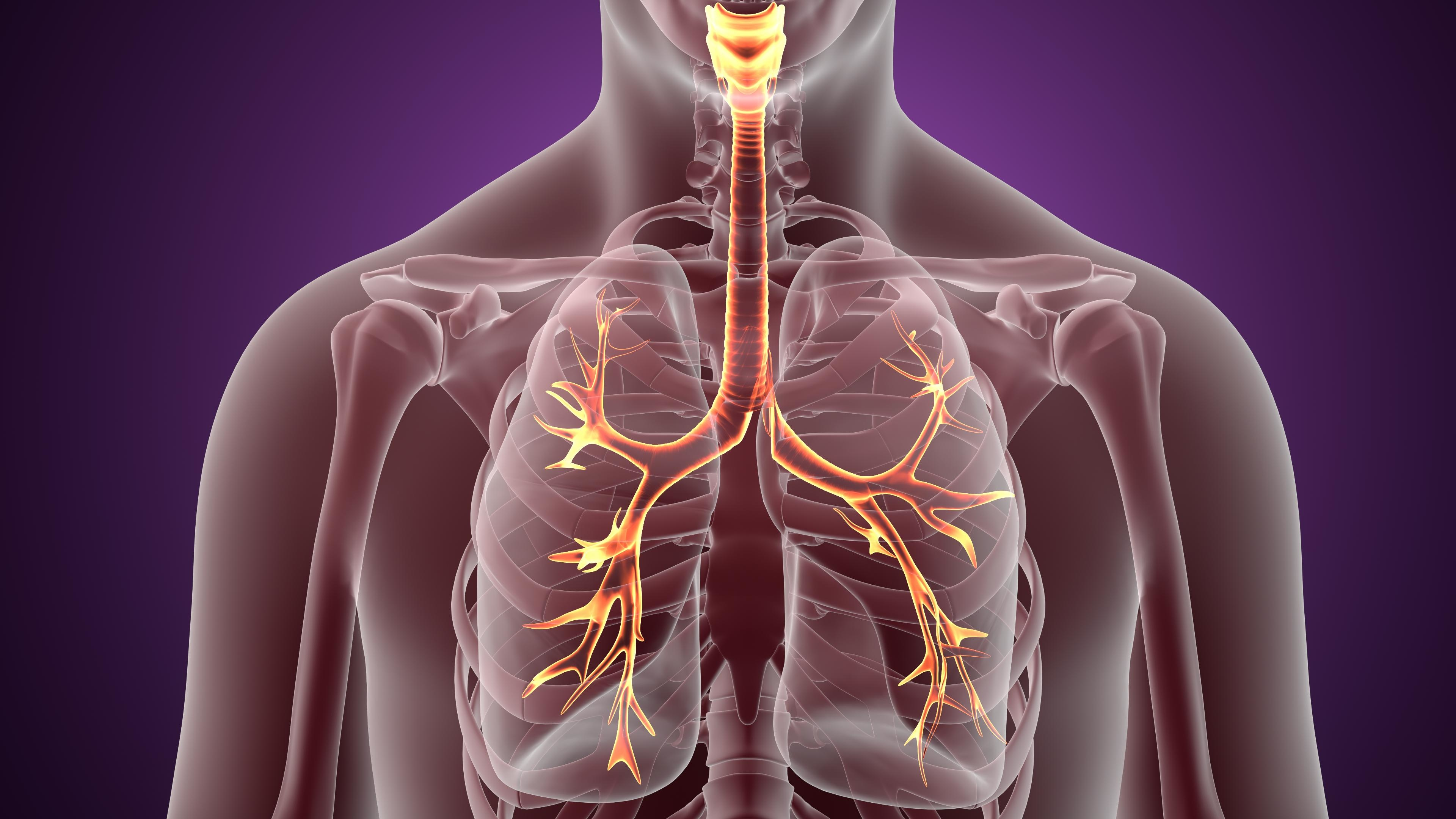 felső légúti megbetegedések