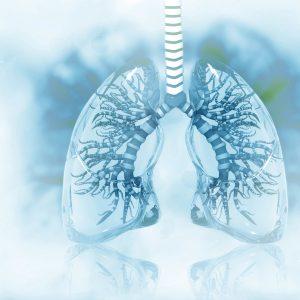 egy emberi tüdő tudományos háttér előtt